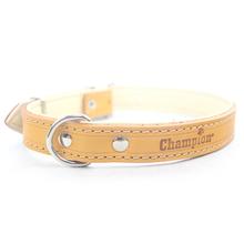 CHAMPION - obroża dla psa skórzana podszyta skórą, naturalna