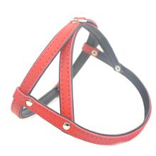 ZOOLESZCZ Smooth - szelki skórzane dla psa (uprząż), czerwono-czarne