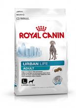 ROYAL CANIN Urban Life Adult L - karma dla dorosłych psów ras dużych (>10kg) żyjących w mieście