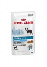 ROYAL CANIN Urban Life Junior All Size - mokra karma dla szczeniąt żyjących w mieście, saszetka 150g