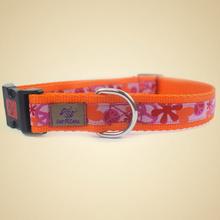 OSSO DI CANE 2.5 Love&Peace Orange - ekskluzywna obroża dla psa