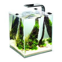 AQUAEL Shrimpset - krewetkarium z oświetleniem LED, czarne + poradnik akwarysty GRATIS!