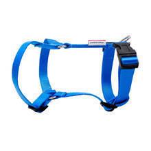 CHAMPION - szelki regulowane dla psa 60, niebieskie