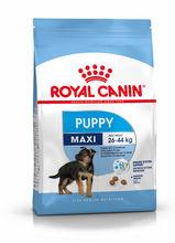ROYAL CANIN Maxi Puppy - karma dla szczeniąt dużych ras