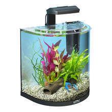 TETRA AquaArt Explorer 30L - zestaw akwariowy dla raków