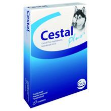 Cestal Dog Flavour - tabletki na odrobaczenie dla psów, 2 szt, 8 szt.