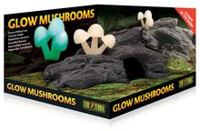 EXO TERRA Glow Mushrooms Natural Hide Out - świecące grzyby rosnące na drewnie - dekoracja do terrarium