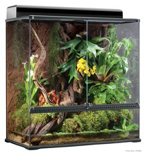 EXO TERRA Terrarium LARGE - szklane terrarium