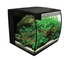 FLUVAL FLEX Aquarium 34L - Akwarium z wypukłą szybą