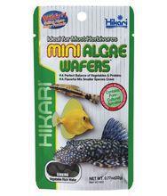 HIKARI Mini Algae Wafers - Pokarm dla glonojadów i innych ryb roślinożernych