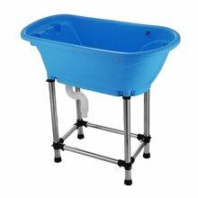 Groom Star Dog Small Bath - wanna do kąpieli małych i średnich zwierząt, niebieska