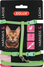 ZOLUX Zestaw spacerowy dla kota w kolorze zielonym