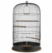 ZOLUX Klatka Retro Marthe dla ptaków, kolor czarny