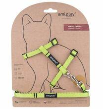 Amiplay - Szelki + smycz dla kota, kolekcja Twist, kolor zielony