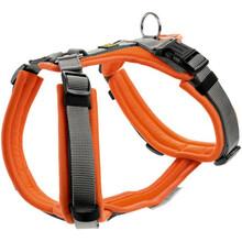 HUNTER Szelki dla psa Maldon w kolorze pomarańczowo-szarym