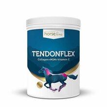 HORSELINE PRO TendonFlex - preparat dla koni borykających się z nawracającymi kontuzjami w obrębie ścięgien i więzadeł