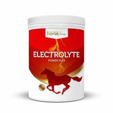 HORSELINE PRO Electrolyte - preparat dla koni wyczynowych do stosowania jako uzupełnienie diety przy bardzo intensywnym wysiłku