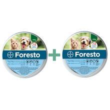 Bayer Foresto Pakiet 2 szt- obroża przeciw pchłom i kleszczom dla kotów i psów do 8kg wagi ciała
