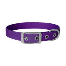 CHABA Obroża LUX dla psa w fioletowym kolorze