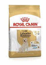 ROYAL CANIN Adult Labrador Retriever +5 - sucha karma dla seniorów Labrador Retriver