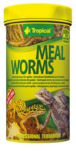 TROPICAL MEAL WORMS - suszone larwy mącznika młynarka dla gadów