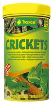 TROPICAL CRICKETS - Suszone świerszcze - pokarm dla gadów oraz dużych ryb ozdobnych