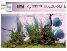 JUWEL- świetlówka Colour-Lite (T8)