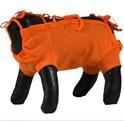 Grande Finale - koszulka pooperacyjna dla psa i kota, kolor pomarańczowy