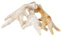 Kurze łapki białe - naturalny smakołyk dla psa, 5 sztuk