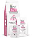 Brit Care Grain-free Puppy Salmon & Potato - bezzbożowa karma dla szczeniąt z łososiem