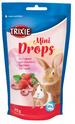 TRIXIE Dropsy dla gryzoni truskawkowe 75g