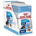 ROYAL CANIN Maxi Puppy, Pakiet 10 szt. - Mokra karma dla szczeniąt ras dużych, Saszetka 140 g