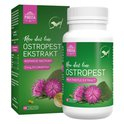 POKUSA Raw Diet Line Ostropest - ostropest ekstrakt w tabletkach, 120 tabletek