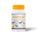 GAMMOLEN - witaminy wzmacniające sierść dla psa i  kota