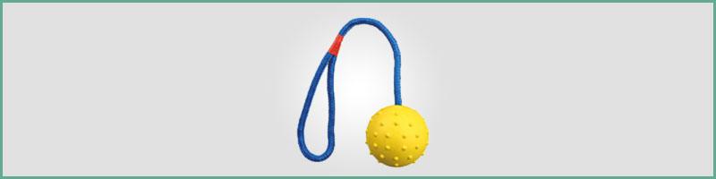 piłka na sznurku do zabawy z psem