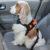 kardiff pasy bezpiczeństwa dla psów