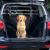 mata do bagażnika dla psa zabezpieczająca samochód