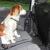 mata rodzielająca do samochodu dla psa