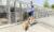 adopcja psa schronisko pierwszy spacer