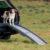 rampa dla psa samochodowa składana trixie